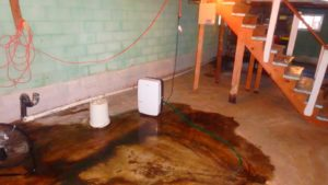 Drying a wet basement in Worcester